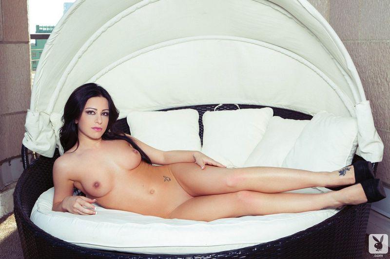 Playboy жопа